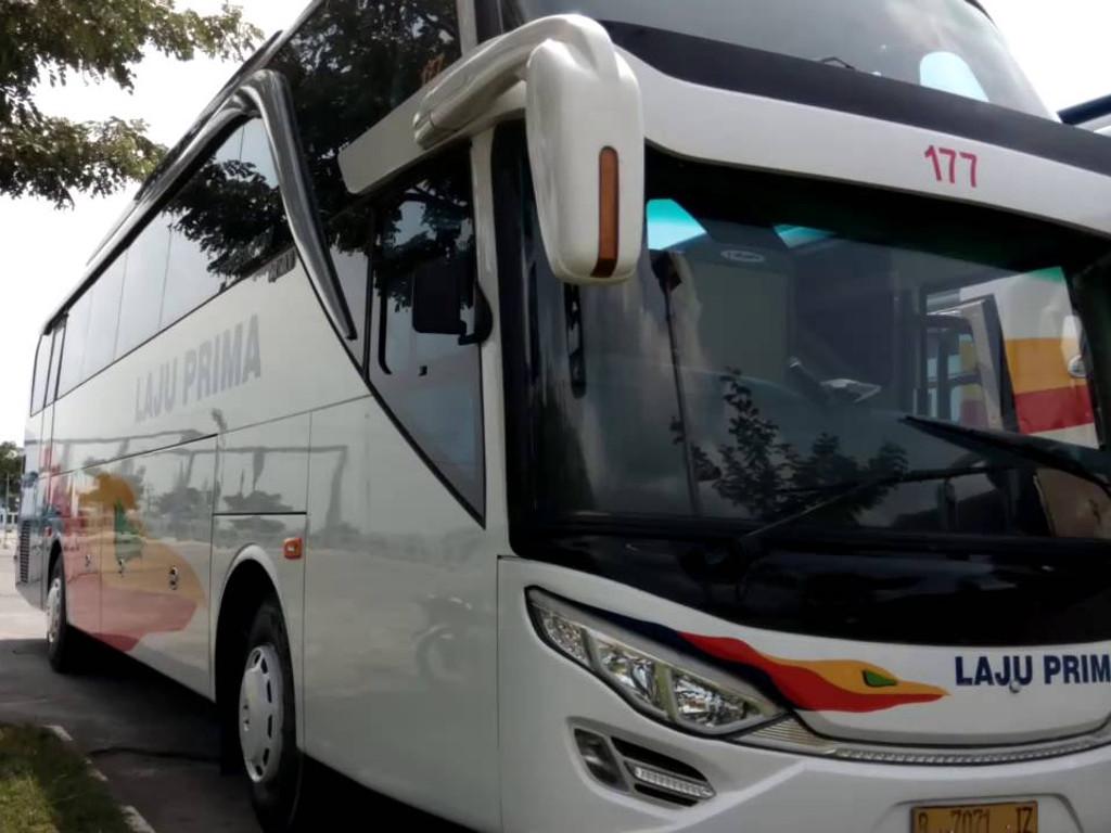 Po Bus Laju Prima   Alamat & Telephone Agen Tiket   Per4an™