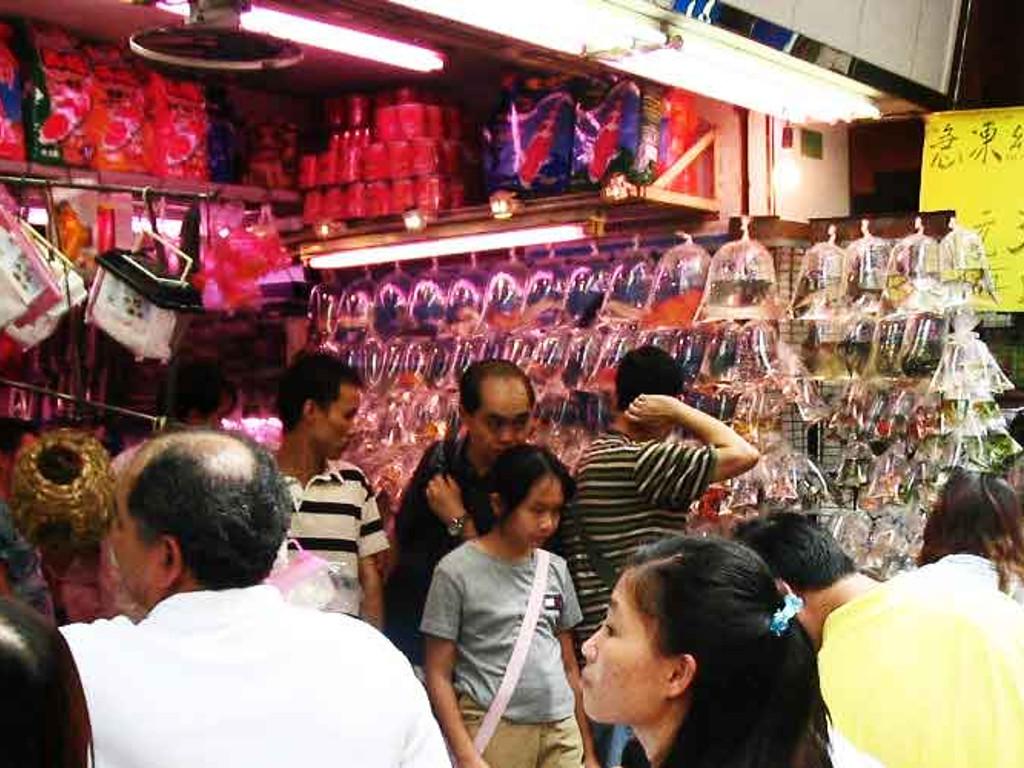 Street Market di Mong Kok : Goldfish Market
